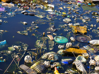 Amendes renforcées pour l'abandon de déchets sur la voie publique