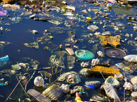 Plastic binge predicted to become as serious as Climate Change