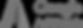 Google_AdWords_logo-grey.png