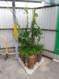 木頭花槽(小)