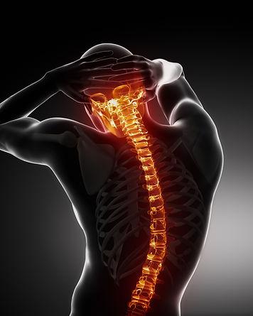 Backbone Scan.jpg