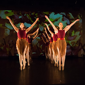 Roynon Dance Swanmore