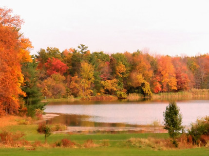 Autumn Golden Lake.jpg
