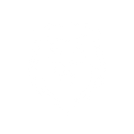 Lion_White.png