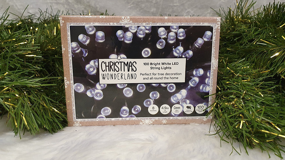 Christmas Wonderland 100 LED string lights