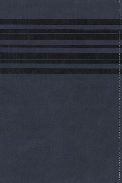 NIrV Large Print Bible Blue Leathersoft