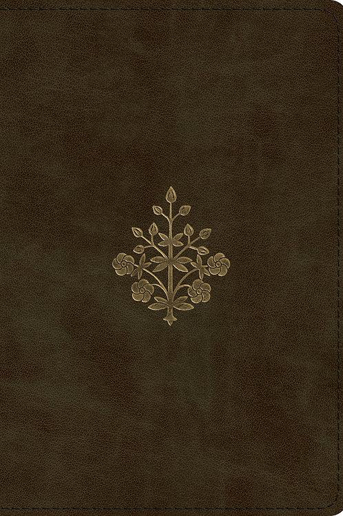 ESV Large Print Compact Bible Olive