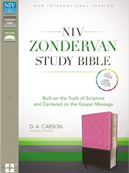 NIV Zondervan Study Bible Orchid and Chocolate
