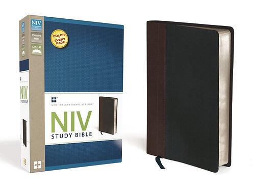 NIV Study Bible Chocolate and Brown