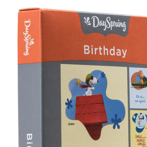 Birthday Boxed Cards Peanuts Dayspring