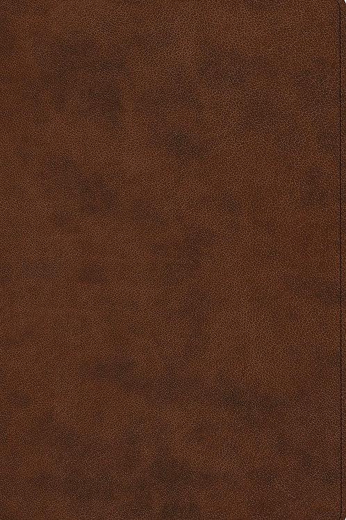 ESV Prayer Bible (TruTone, Brown) Imitation Leather