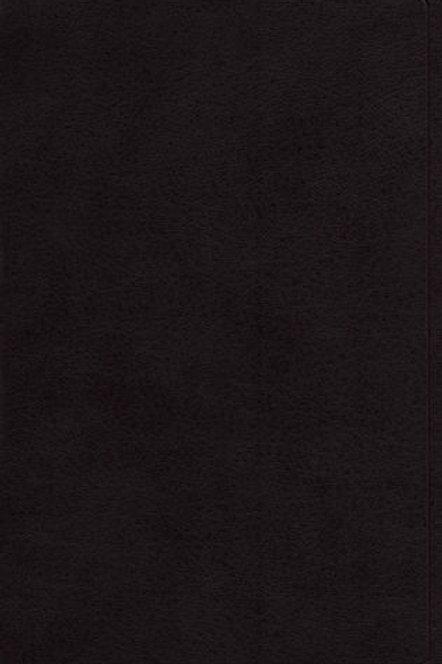 ESV Black Large Print Personal Size Bible