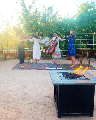 Willow String Quartet at Greenhouse Gardens