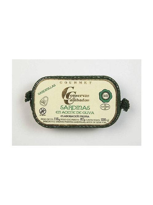 Kleine Sardinen in Olivenöl 16/22
