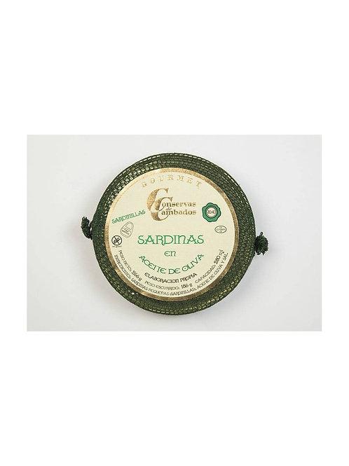 Kleine Sardinen in Olivenöl 30/40