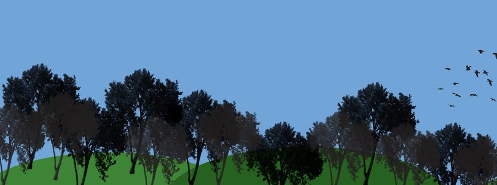 Première animation