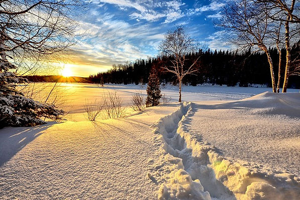 winter-landscape.jpg