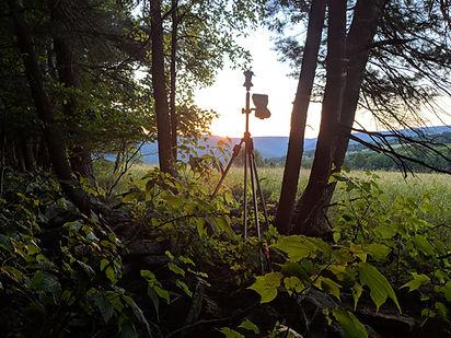 Land Surveyor.jpg