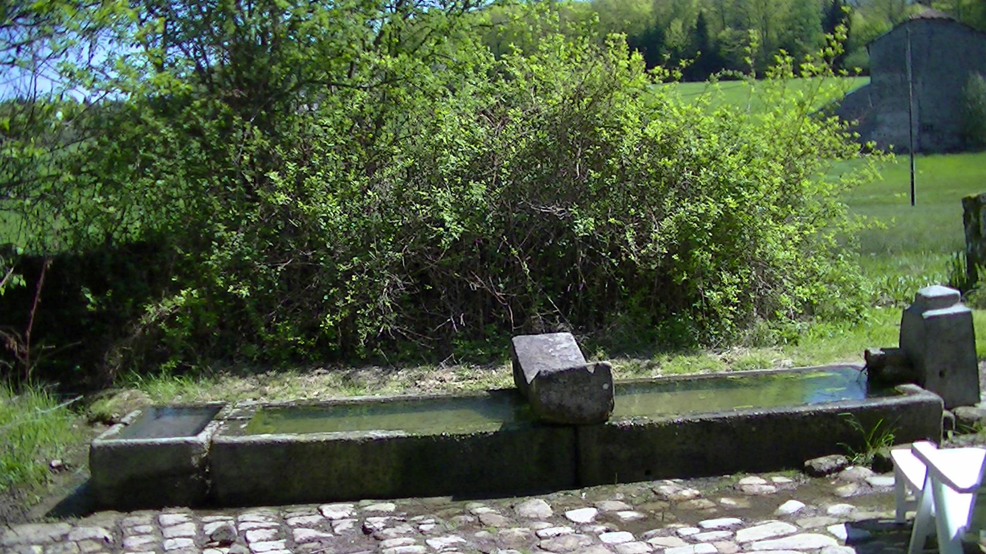 De natuurlijke bron