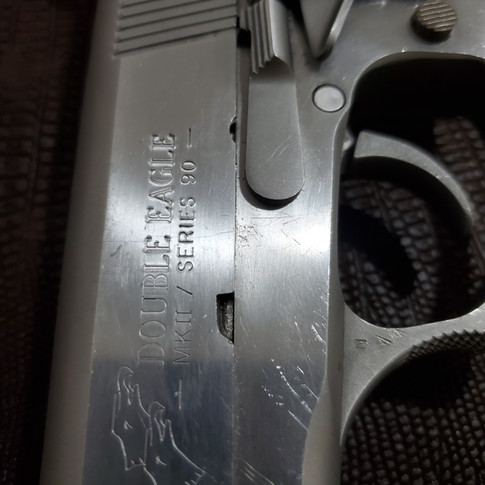 BEFORE: Colt Double Eagle 10 mm