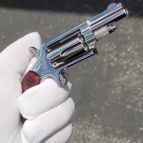 Polished NAA Pug .22 Magnum