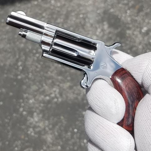 High Polished NAA .22 Magnum