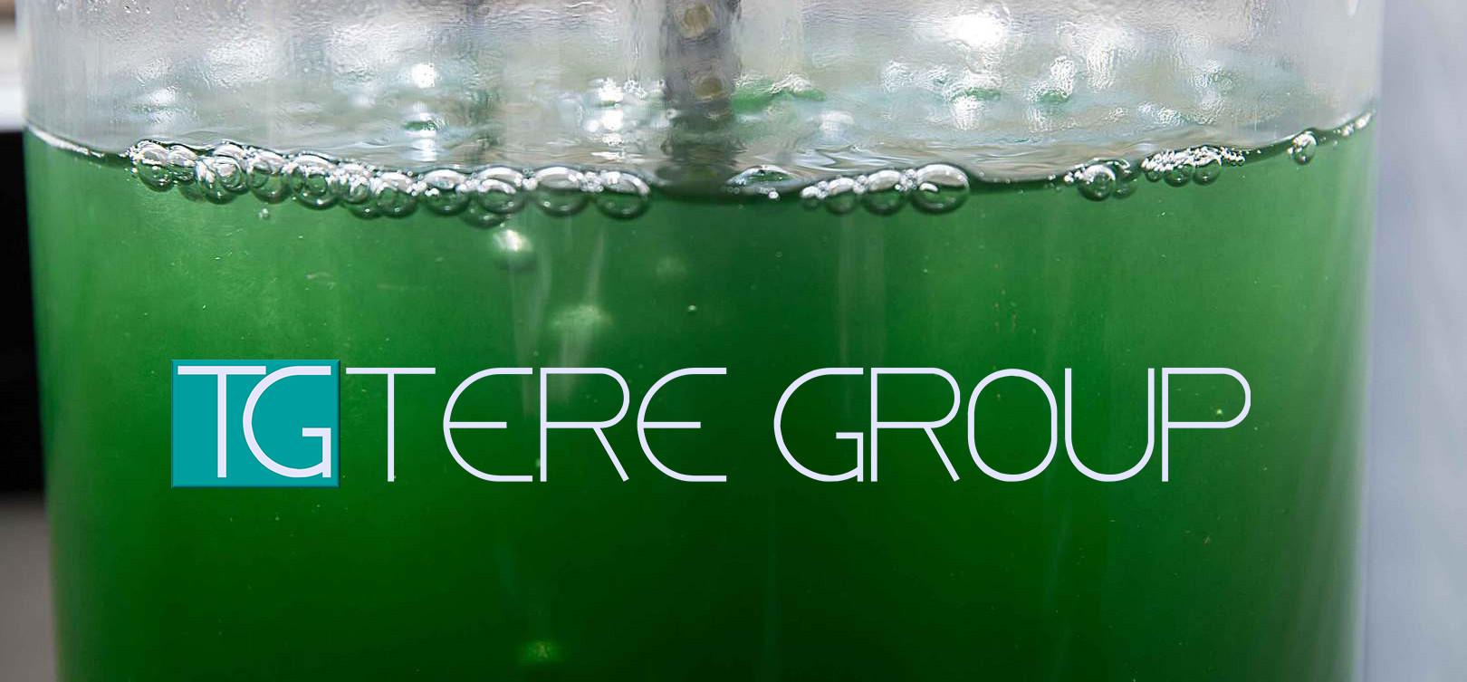 Impianti per microalghe | Tere Group srl