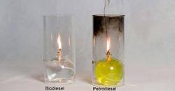 Biodiesel / petrodiesel