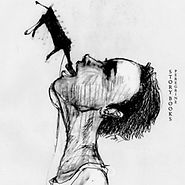Story Books - Peregrine
