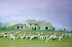 La Quère 1968