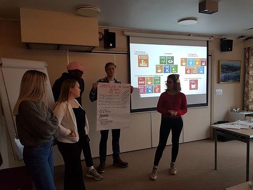 Norwegian Regional Youth Council Representatives set high standards for Sustainable Development Goals (SDGs)