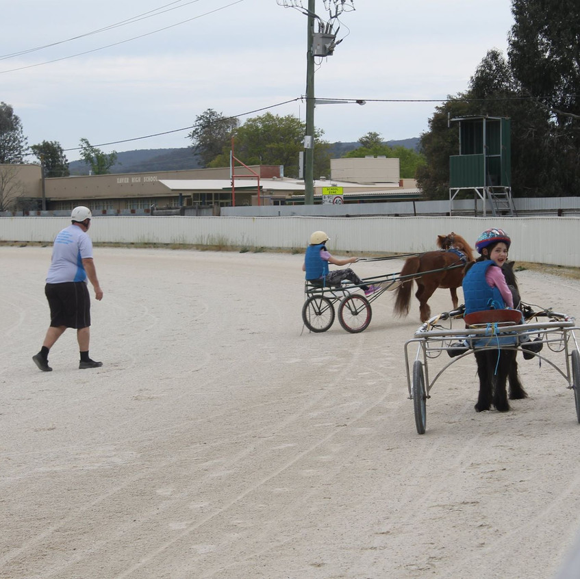 Albury Mini Trots. Training Session.