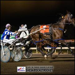 SHESA POCKETROCKET, driven by Amy Rees, won at the Parkes Trots