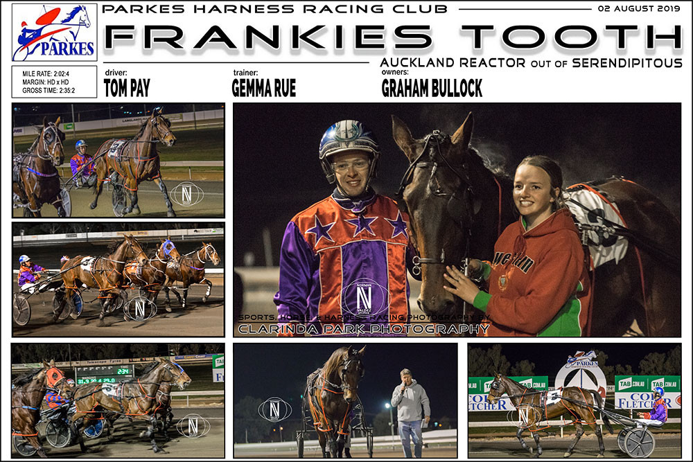 FRANKIES TOOTH Wins at Parkes Harness Racing Club. Trainer: Gemma Rue. Driver: Tom Pay. Owner: Graham Bullock