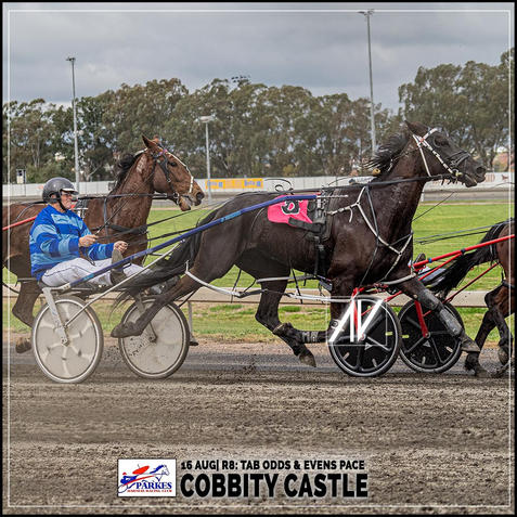 COBBITY CASTLE, driven by Graham Betts, wins at Parkes Trots last 16 August 2020
