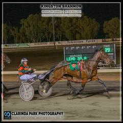 PARKES HARNESS - Race 6 - HRNSW REWARDS SERIES HEAT - KINGSTON SHANNON wins at Parkes Trots