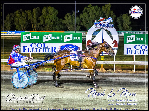 R9 - KEVIN & KAY SEYMOUR EVOLUTION SERIES 3YO COLTS & GELDINGS HEAT - Mach Le More - Amanda Turnbull - 03 - 003