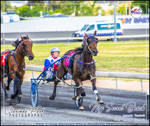 R1 - CLUB MENANGLE WHERE HORSES FLY HEAT - My Secret Beach - Amanda Turnbull - 02 - 003