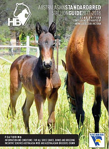 Horse Photography by Clarinda Park Photograhy | Pia, a Heston Blue Chip filly out of Soho Leigh. Cover Photo of Australasian Standardbred Stallion Guide 2017-2018
