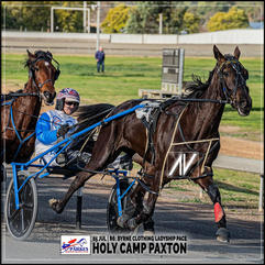 HOLY CAMP PAXTON, driven by Mat Rue, wins at the Parkes Trots last 05 July 2020.