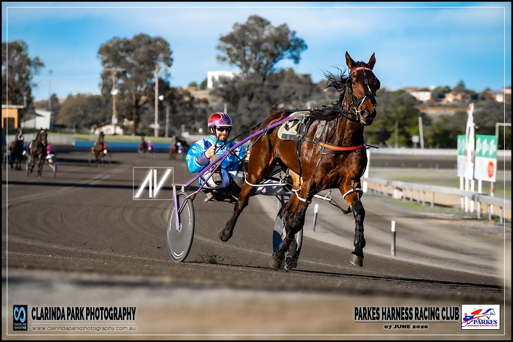 RACE 5: HUTCHINGS FAMILY PACE winner: ALLY ROGAN driver: Doug Hewitt    trainer: Bernie Hewitt owner: G Picker, J Picker