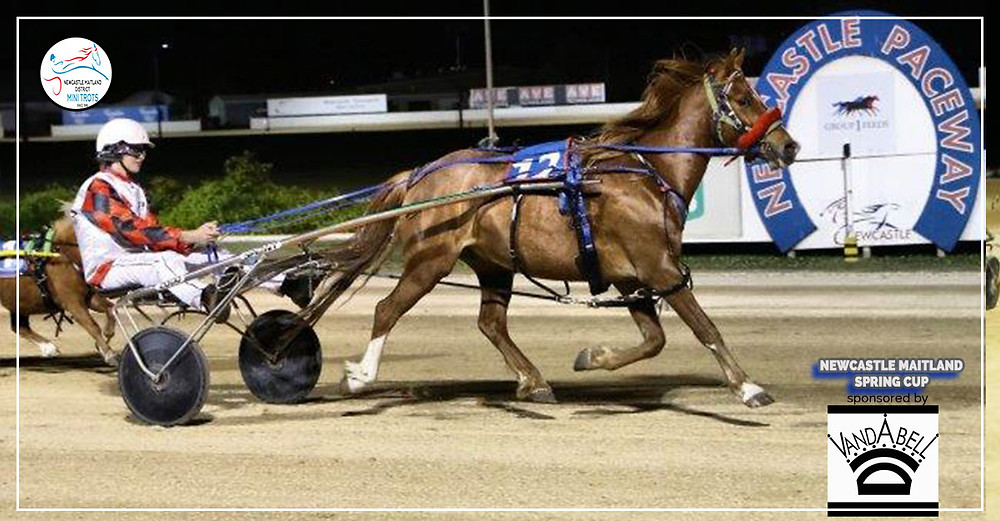 Harrison Wiggins with his pony Cruiser taking home the Newcastle Maitland Mini Trots Spring Cup 2019 sponsored by Vandabell Equine Jewellery.