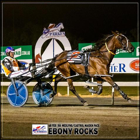 EBONY ROCKS, driven by Nathan Turnbull, won at the Parkes Trots