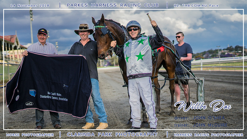 Parkes Harness | 14 November 2018 | Race 1 Tab.com.au Pace winner | Harness Racing Photos | Horse Photographer | Clarinda Park Photography