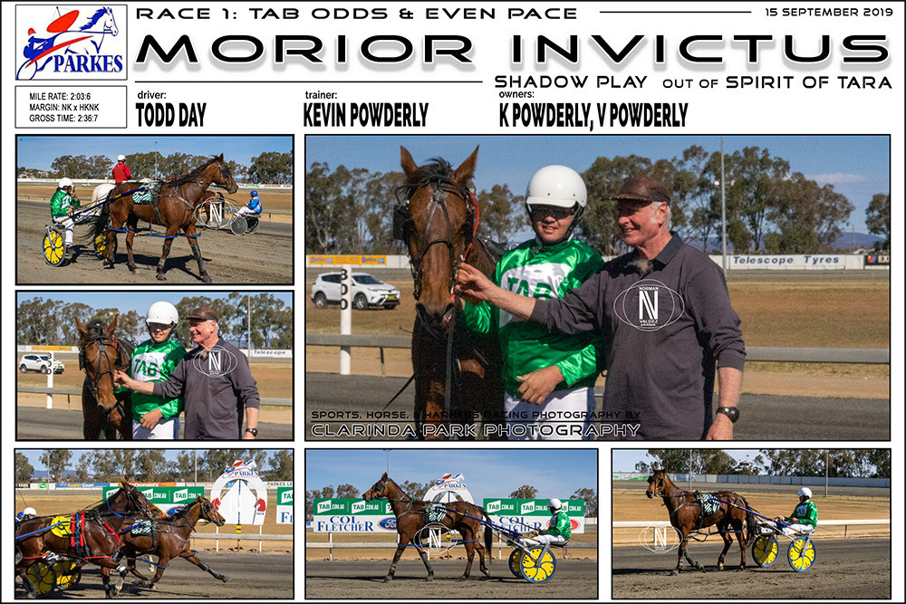 MORIOR INVICTUS Wins at Parkes Harness Racing Club. Trainer: Kevin Powderly. Driver: Todd Day. Owner: K Powderly, V Powderly
