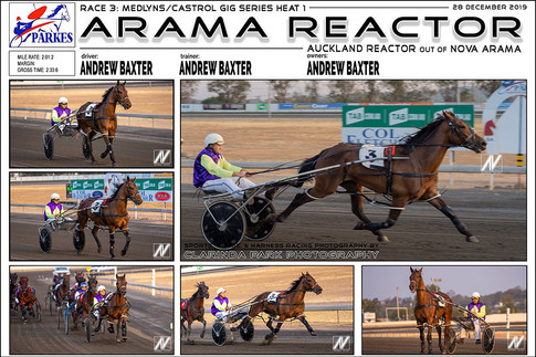 PARKES HARNESS - Race 3 - MEDLYNS/CASTROL GIG SERIES HEAT 1 - ARAMA REACTOR wins at Parkes Trots