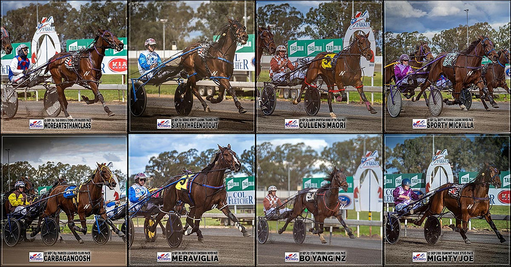PARKES HARNESS Racing Club winners - 27 Sep 2020 - MOREARTSTHANCLASS - SIXTYTHREENOTOUT - CULLENS MAORI - SPORTY MICKILLA - CARBAGANOOSH - MERAVIGLIA - BO YANG NZ - MIGHTY JOE