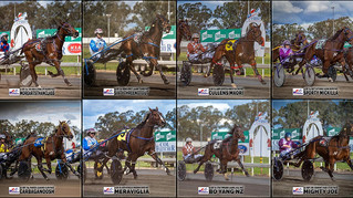 Congratulations to PARKES HARNESS Racing Club Race Meeting Winners - 27 September 2020