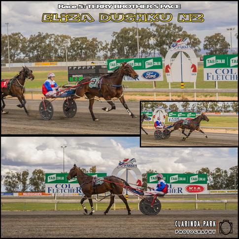 20181014 - Race 05 - Terry Brothers Pace - ELIZA DUSHKU NZ - AMANDA TURNBULL - 001