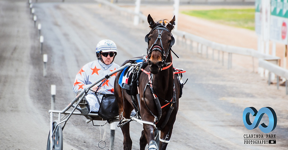 Race 2 Langlands Hanlon Pace winner Feeling Foxy and John JT O'Shea Horse Harness Racing Photography by Clarinda Park Photography